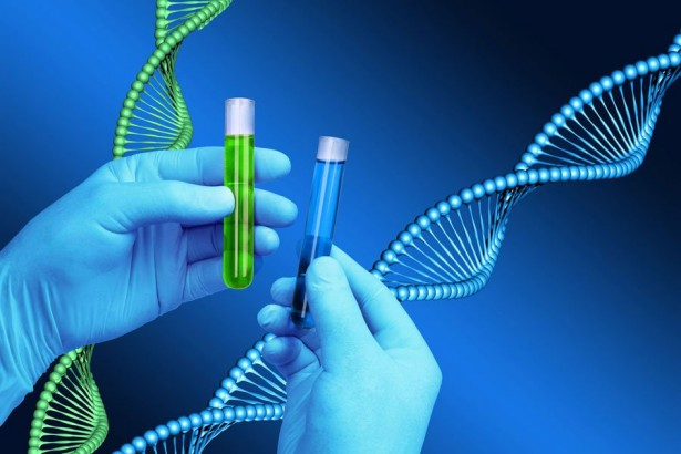 the history function and advancement in dna technologies Rapid dna technology to revolutionize arrestee screening written rapid dna technology—that returns dna advances in technology changed all of that and.